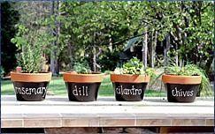 Macetas de hierbas de terracota o de metal